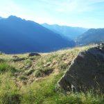 pulizia sentiero gara crof-hutz (3)